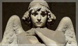 Концерт Троица в Ангельских Ликах