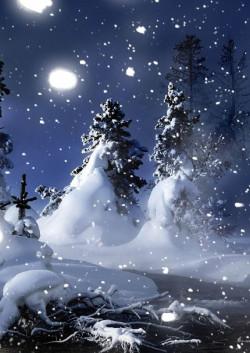 Концерт Чудо Рождества