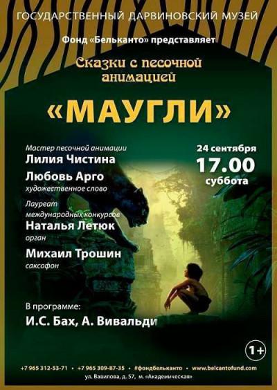 Концерт Маугли