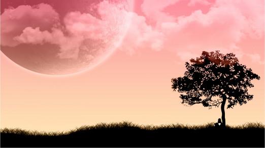 Концерт V международный фестиваль «Шедевр фирмы Зауэр». Лунная соната