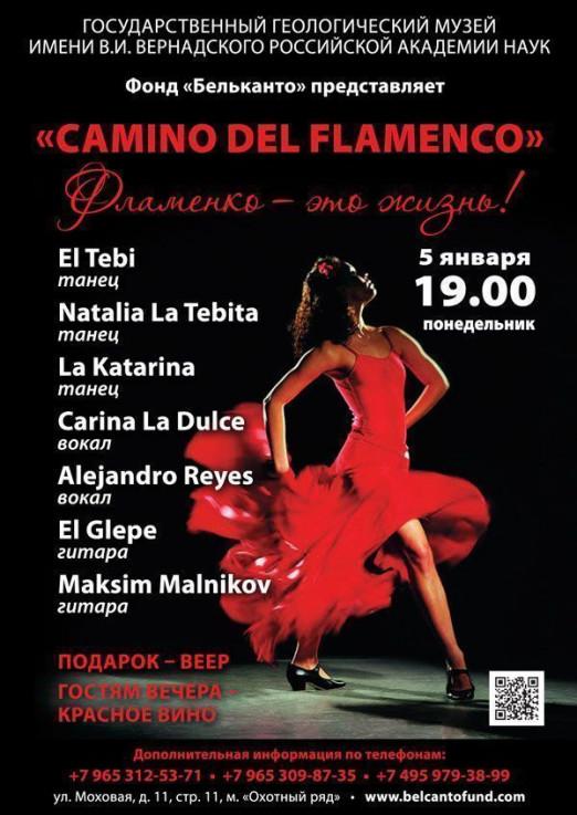Концерт Camino del Flamenco
