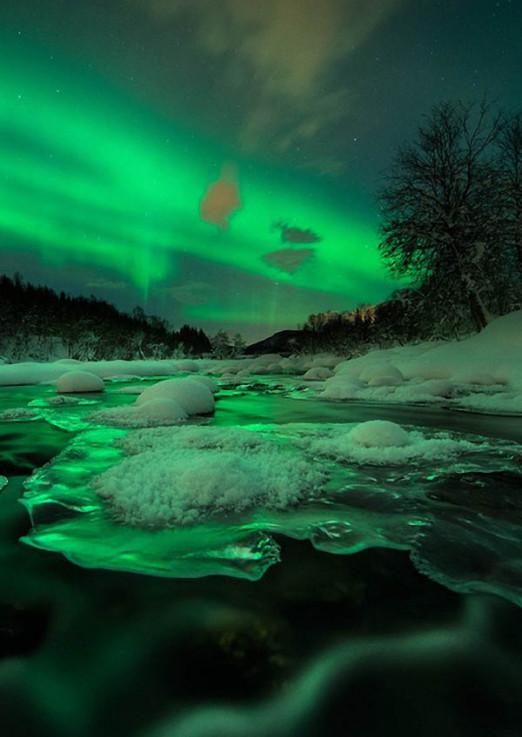 Концерт Венская классика и норвежский романтизм