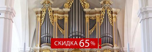 Концерт V международный фестиваль «Шедевр фирмы Зауэр». Торжественное открытие. «Готическая симфония: Бах и Босх»