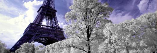 Концерт «Рождественский вечер в Париже. Орган и оркестр»