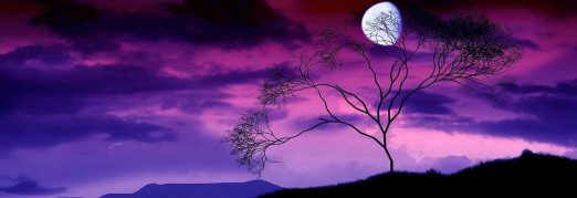Концерт «Бетховен. Лунная соната. Моцарт. Маленькая ночная серенада. Гайдн. Прощальная симфония»