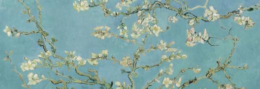 Концерт «Звучащие полотна. Ван Гог» Японская флейта, орган и водная анимация-эбру