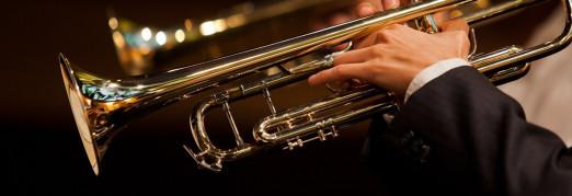 Концерт «Ночь в Соборе. Виртуозы трубы и органа»