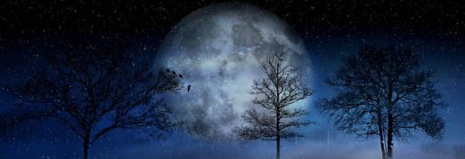 Концерт «Christmas-Gala. Ночь в соборе. Лунная соната»