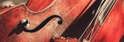 Концерт «Вивальди. Времена года. Моцарт. Маленькая ночная серенада. Бах. Токката и фуга ре минор»