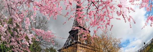 Концерт «Звуки города. Париж»