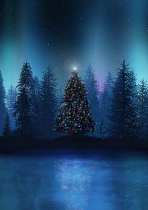 Концерт Дорога в Рождество. Вечер шестнадцатый