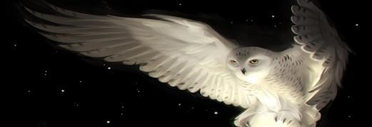Концерт «Музыкальный мир Фэнтези: Гарри Поттер»